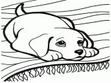 dog-coloring-pages-to-download-and-print-for-free
