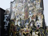 Dog Murals for Wall Dog Mural for Brighton Festival In Kensington St