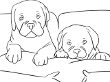 dogs-in-bed-coloring-page-coloring-pages