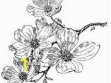 Dogwood Tree Coloring Page 9 Best Tattoo Ideas Images