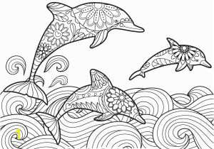 Dolphin Coloring Pages for Kids Pin by Muse Printables On Adult Coloring Pages at Coloringgarden