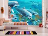 Dolphin Paradise Wall Mural Dolphins Mehr Als 1500 Angebote Fotos Preise ✓ Seite 4