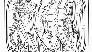 Dover Coloring Pages Printable Coloring for Adults Kleuren Voor Volwassenen