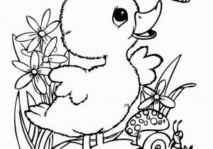 Duck Coloring Pages for toddlers Cute Coloring Sheets for Kids Cute Baby Duck Coloring Pages Google