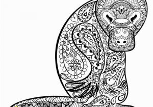 Duckbill Platypus Coloring Page Duck Billed Platypus Coloring Page Duckbill