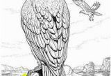 Eagle Mandala Coloring Pages 56 Besten Mandala Tiere Bilder Auf Pinterest