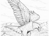 Eagle Mandala Coloring Pages Coloring Pages Bald Eagles Wild Eagle Sketches Kids Coloring