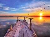 Early American Wall Murals Early Bird Dock Fly by Sunrise Sunset