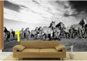 Equestrian Wall Mural 23 Best Horse Wall Murals Images