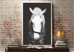 Equestrian Wall Mural Black & White Horse Graphy Horse Wall Decor Horse Wall Art