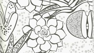 Esperanza Rising Coloring Pages Esperanza Rising Coloring Pages New Coloring Pages Inspirational