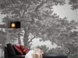 Etched Arcadia Wall Mural Tree Wallpaper Black and White Wallpaper Passepartout