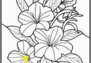 Exotic Flower Coloring Pages 23 Best Glass Paint Images