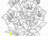 Exotic Flower Coloring Pages 426 Best Coloring Pages to Print Flowers Images On Pinterest In