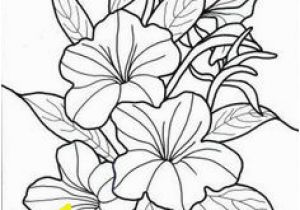 Exotic Flower Coloring Pages 46 Best Flowers and Plants Images On Pinterest