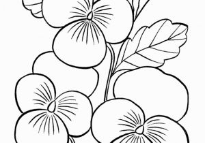 Exotic Flower Coloring Pages Pin by Teresa Hansen On Bible Pinterest