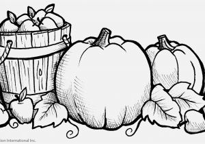 Fall Coloring Pages for Adults to Print Pretty Coloring Pages Printable Preschool Coloring Pages Fresh Fall