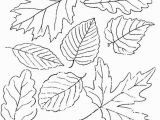 Fall Leaves Clip Art Coloring Pages Printable Fall Leaves Coloring Pages Fall Leaves Coloring Pages Best