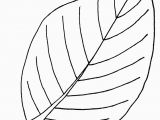 Fall Leaves Coloring Pages for Kindergarten Free Printable Leaf Coloring Pages for Kids Arts