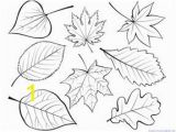 Fall Leaves Coloring Pages Printable Fall Leaves and Trees Coloring Printables