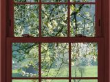 Faux Window Murals Cherry Blossoms 1 Of 3 Faux Window Illusion