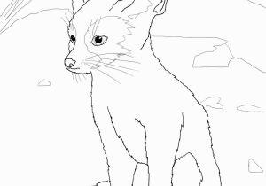 Fennec Fox Coloring Page Fennec Coloring Page