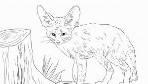 Fennec Fox Coloring Page north African Fennec Fox Coloring Page