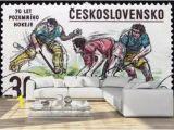 Field Hockey Wall Murals 22 827 Hockey Ice Sport Winter Wall Murals Canvas Prints