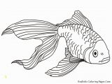 Fish Coloring Pages for Kids Tropical Fish Coloring Pages