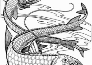 Fish with Scales Coloring Page Viper Fishes Coloring Page More Coloring Pages Pinterest