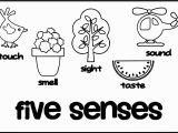 Five Senses Coloring Pages Free Unique 5 Senses Coloring Sheet Gallery