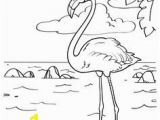 Flamingo Coloring Pages Pdf 14 Best Flamingo Coloring Page Images