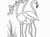 Flamingo Coloring Pages Pdf 251 Best Stuff I Love but Will Never Make Images