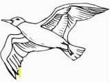 Flying Crow Coloring Page Flying Bird Coloring Pages Getcoloringpages Coloring Pages