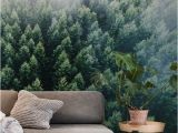 Foggy forest Wall Mural forests From the Sky Ii Wall Mural Wallpaper forest