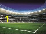 Football Stadium Murals Sports Wall Murals
