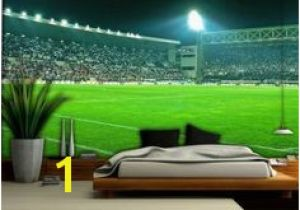 Football Stadium Wall Murals 17 Best Boudy Images