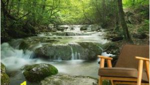 Forest Stream Wall Mural Enchanting forest Waterfall In 2019 Home