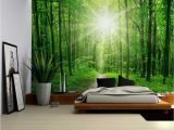 Forest Wall Decal Mural Wall26 Sun Shining On A Hidden Trail In A forest Wall