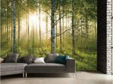 Forest Wall Mural Bedroom 1 Wall forest Giant Mural Sportpursuit