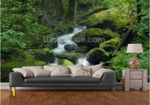 Forest Wall Mural Painting Mossy Waterfall In 2019