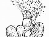 Free Cactus Coloring Pages Prickly Pear Cactus Coloring Page