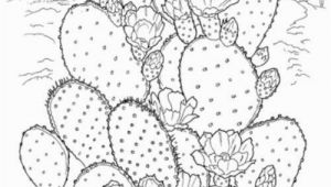 Free Cactus Coloring Pages Printable Coloring Pages for Adults 15 Free Designs