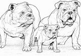 Free Coloring Pages Dogs and Puppies English Bulldogs with Puppy Coloring Page