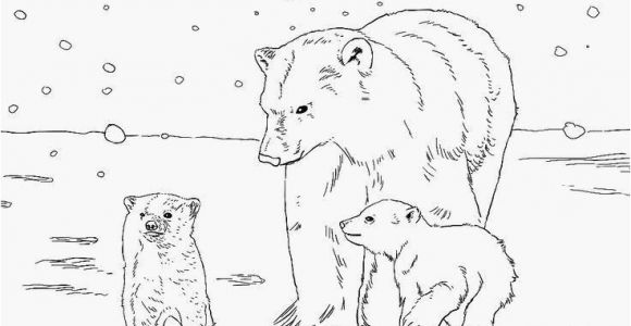 Free Coloring Pages Of Animals Baby Coloring Pages Lovely Printable Animals Free Kids S Best Page