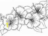 Free Coloring Pages Of Hawaiian Flowers Lovely Hawaiian Flower Free