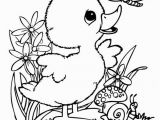 Free Coloring Pages Of Leprechauns Incredible Coloring Pages Bird Pdf Picolour