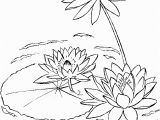 Free Coloring Pages Of Tulips Water Lily On A Lake