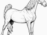 Free Horse Coloring Pages Horse Coloring Pages Fresh Free Coloring Pages Elegant Crayola Pages