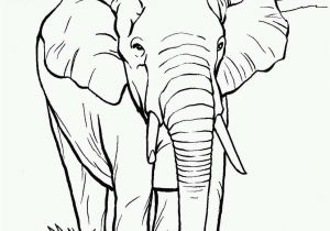 Free Indian Coloring Pages Indian Coloring Pages Best Elephants to Color Elephants Coloring